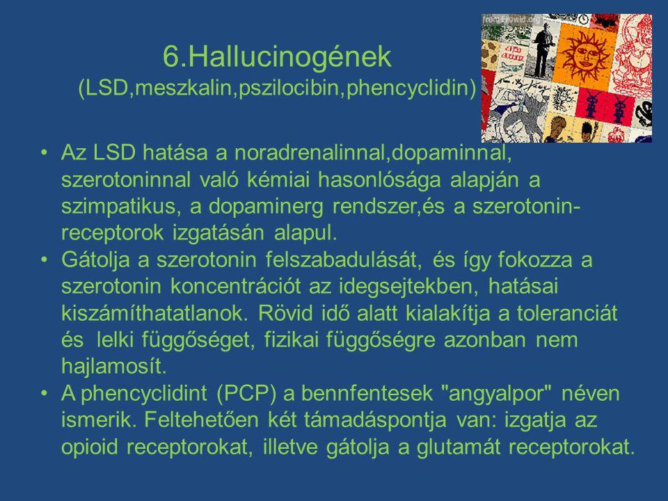 6.Hallucinogének (LSD,meszkalin,pszilocibin,phencyclidin) •Az LSD hatása a noradrenalinnal,dopaminnal, szerotoninnal való kémiai hasonlósága alapján a