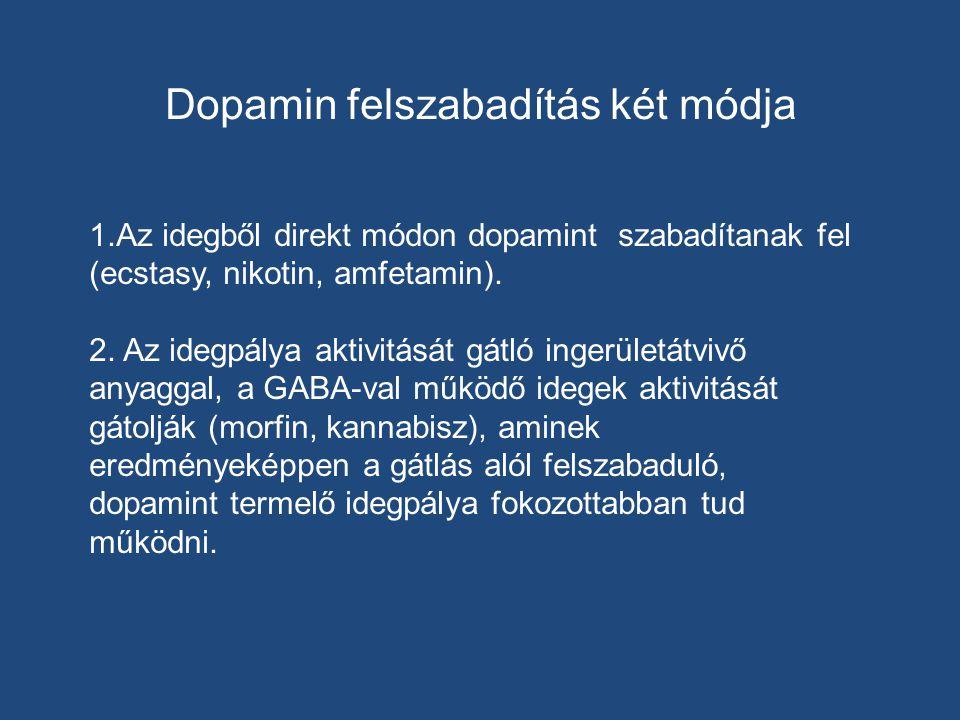 Dopamin felszabadítás két módja 1.Az idegből direkt módon dopamint szabadítanak fel (ecstasy, nikotin, amfetamin). 2. Az idegpálya aktivitását gátló i