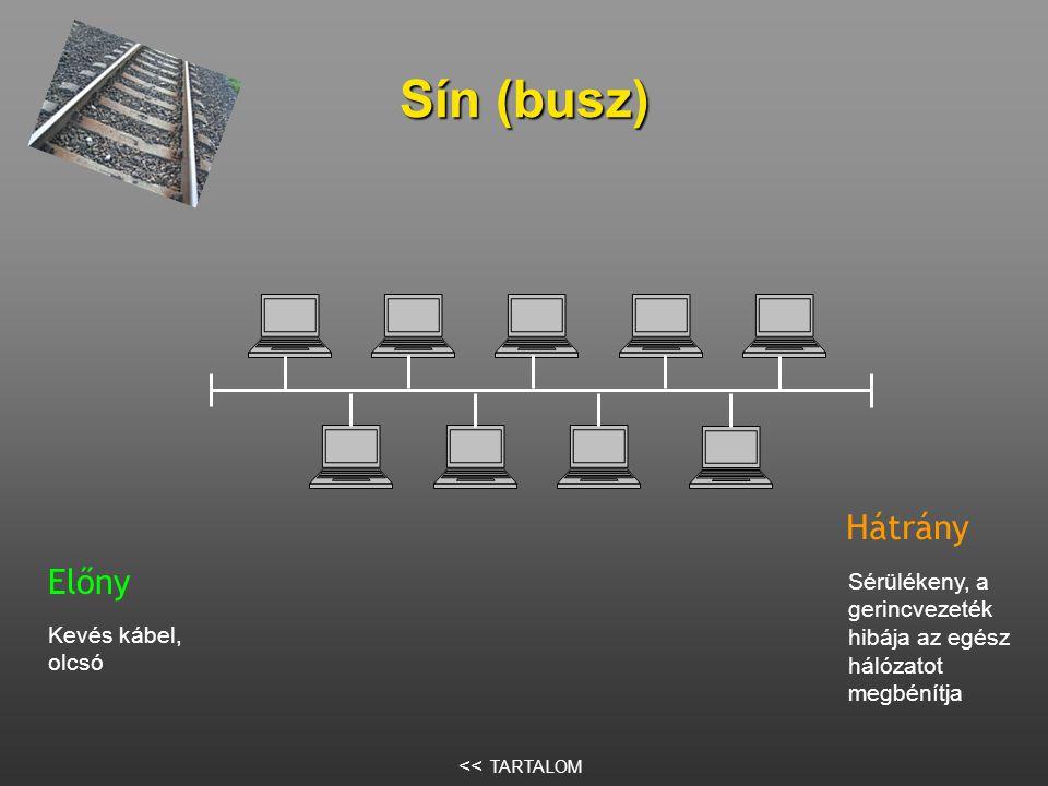Sín (busz) Előny Kevés kábel, olcsó Hátrány Sérülékeny, a gerincvezeték hibája az egész hálózatot megbénítja << TARTALOM