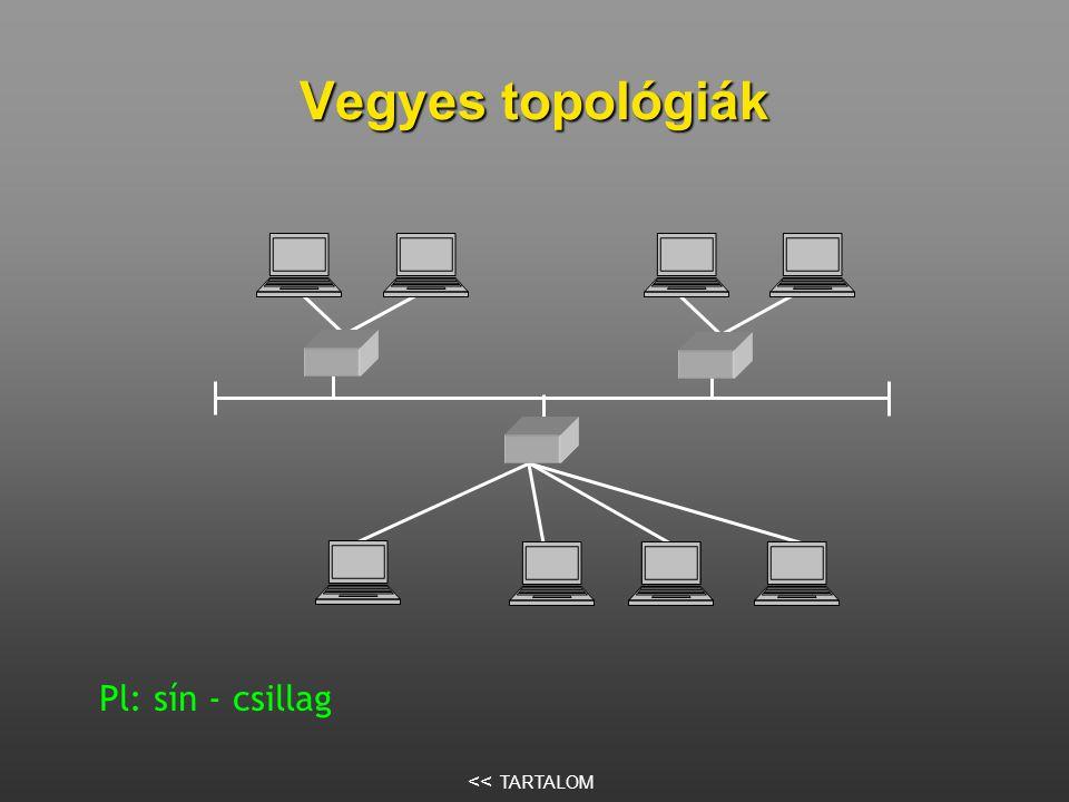 Vegyes topológiák Pl: sín - csillag << TARTALOM
