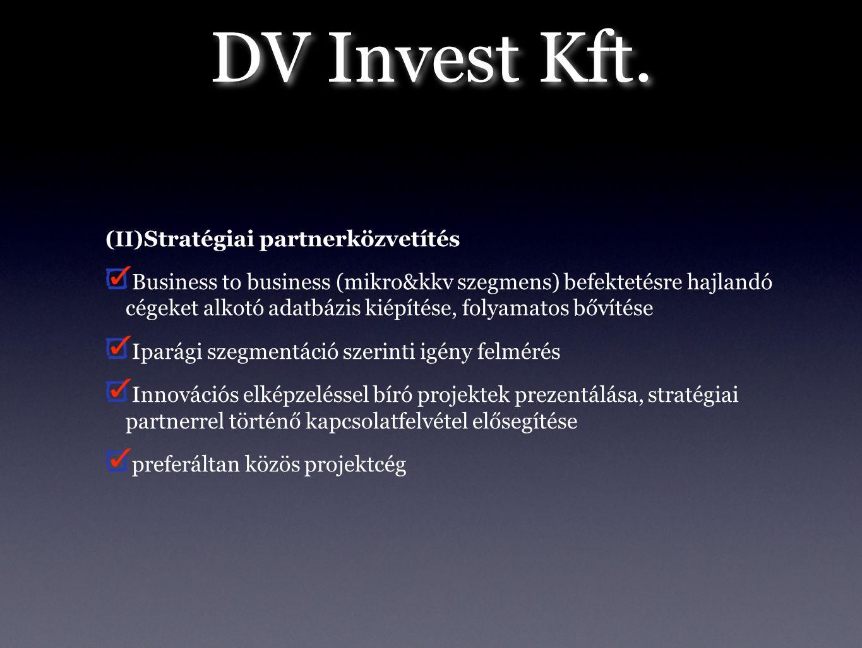 DV Invest Kft. (II) Stratégiai partnerközvetítés Business to business (mikro&kkv szegmens) befektetésre hajlandó cégeket alkotó adatbázis kiépítése, f