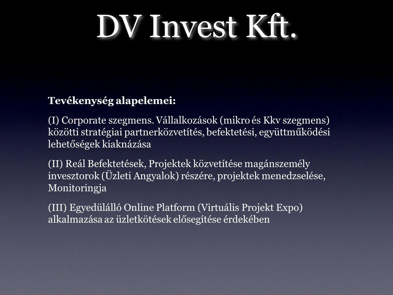 Tevékenység alapelemei: (I) Corporate szegmens. Vállalkozások (mikro és Kkv szegmens) közötti stratégiai partnerközvetítés, befektetési, együttműködés