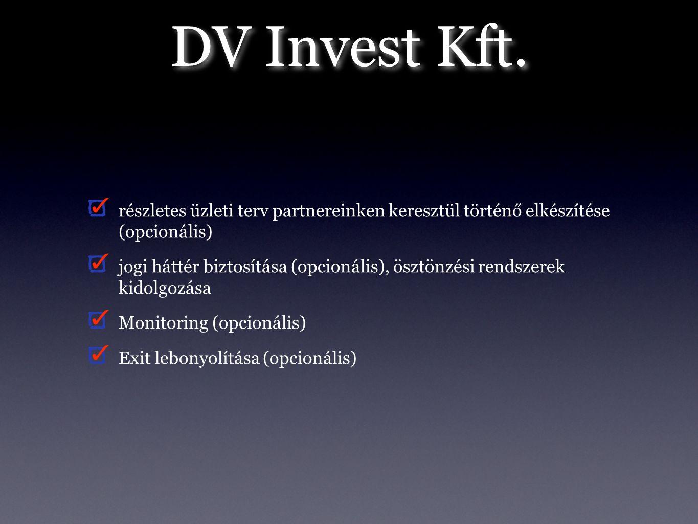 DV Invest Kft. részletes üzleti terv partnereinken keresztül történő elkészítése (opcionális) jogi háttér biztosítása (opcionális), ösztönzési rendsze
