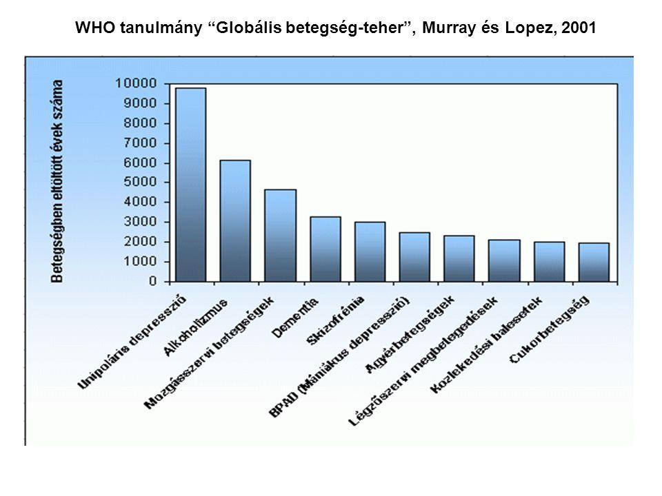 """WHO tanulmány """"Globális betegség-teher"""", Murray és Lopez, 2001"""