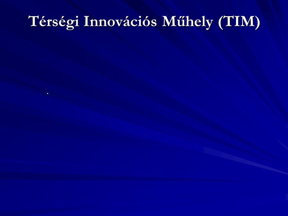 Térségi Innovációs Műhely (TIM).