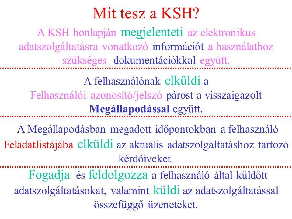 Mit tesz a KSH.