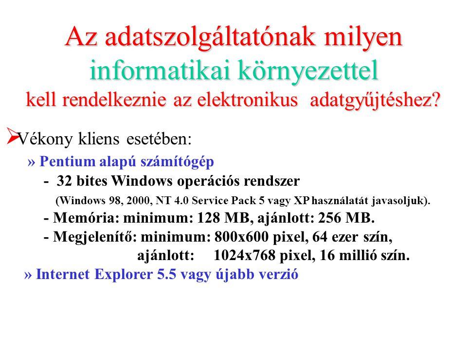 Az adatszolgáltatónak milyen informatikai környezettel kell rendelkeznie az elektronikus adatgyűjtéshez.