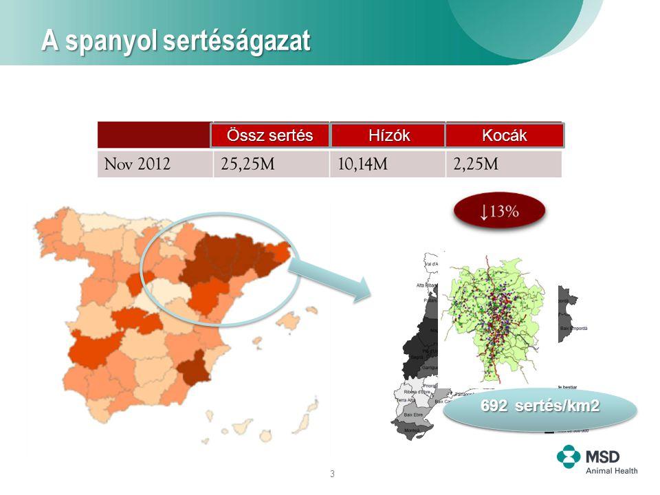 3 A spanyol sertéságazat 202 sertés/km2 692 sertés/km2 Össz sertés HízókKocák