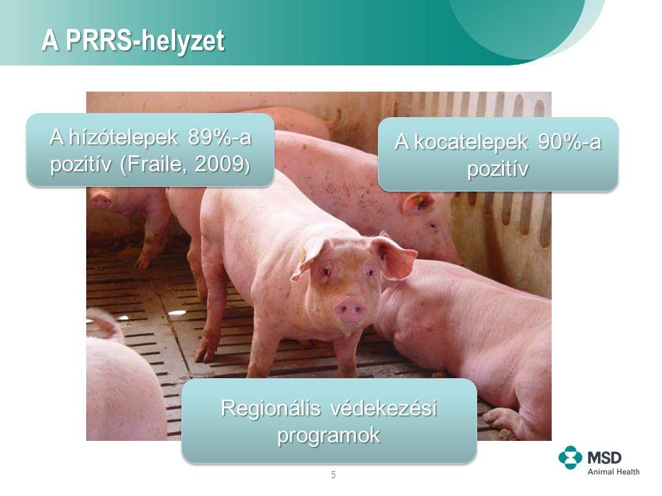 26 Következtetések A PRRS jelenti az egyik legnagyobb fenyegetést a jövedelmező sertéstenyésztésre nézve Bár számos erőfeszítés történt, az ellene való védekezés teljesen nem megoldott A PRRS elleni vakcinázás a betegség elleni védekezés hatékony eszköze: klinikai védelem, virológiai védelem alakul ki, és a vírusátvitel csökken.
