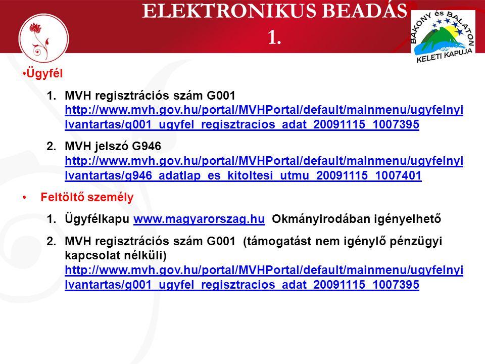 ELEKTRONIKUS BEADÁS 1. •Ügyfél 1.MVH regisztrációs szám G001 http://www.mvh.gov.hu/portal/MVHPortal/default/mainmenu/ugyfelnyi lvantartas/g001_ugyfel_