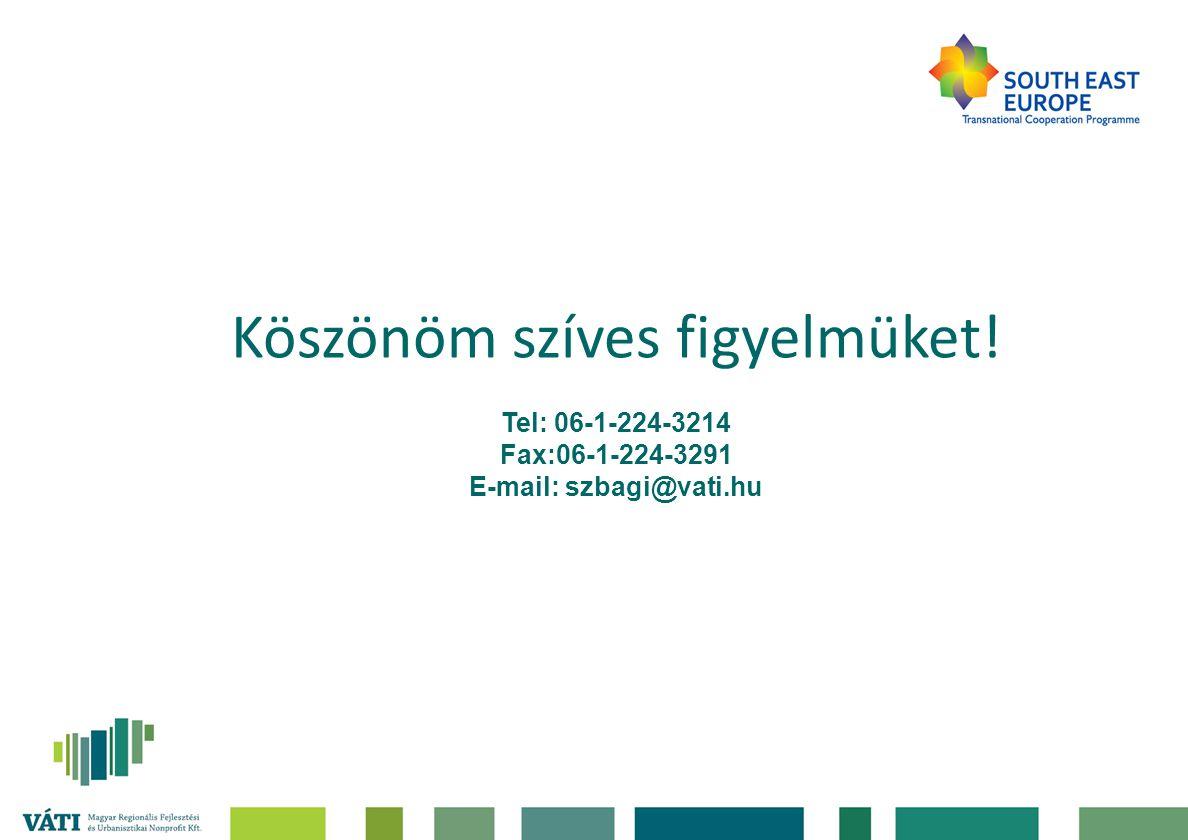 Köszönöm szíves figyelmüket! Tel: 06-1-224-3214 Fax:06-1-224-3291 E-mail: szbagi@vati.hu