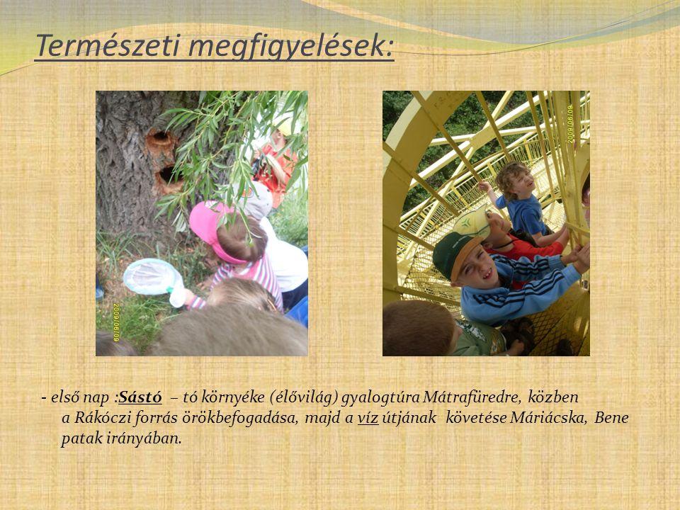 Természeti megfigyelések: - első nap :Sástó – tó környéke (élővilág) gyalogtúra Mátrafüredre, közben a Rákóczi forrás örökbefogadása, majd a víz útján