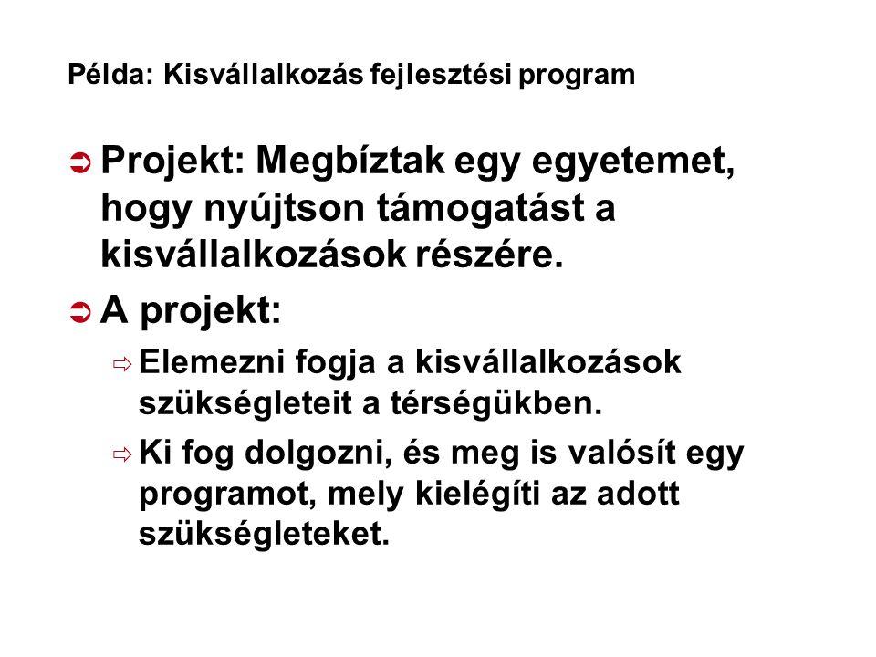 Példa: Kisvállalkozás fejlesztési program  Projekt: Megbíztak egy egyetemet, hogy nyújtson támogatást a kisvállalkozások részére.  A projekt:  Elem