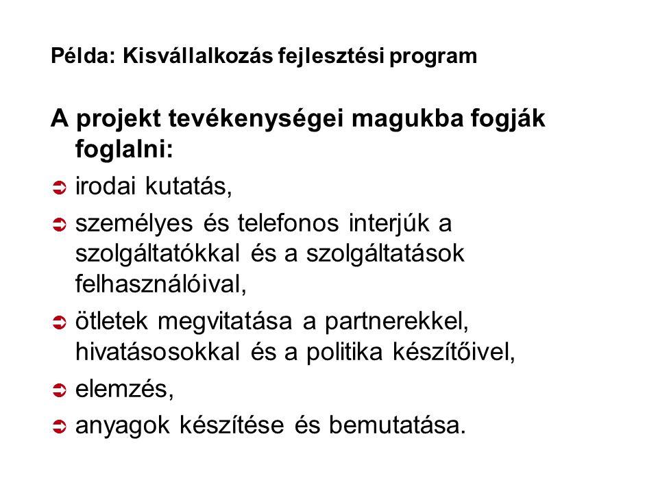 Példa: Kisvállalkozás fejlesztési program A projekt tevékenységei magukba fogják foglalni:  irodai kutatás,  személyes és telefonos interjúk a szolg