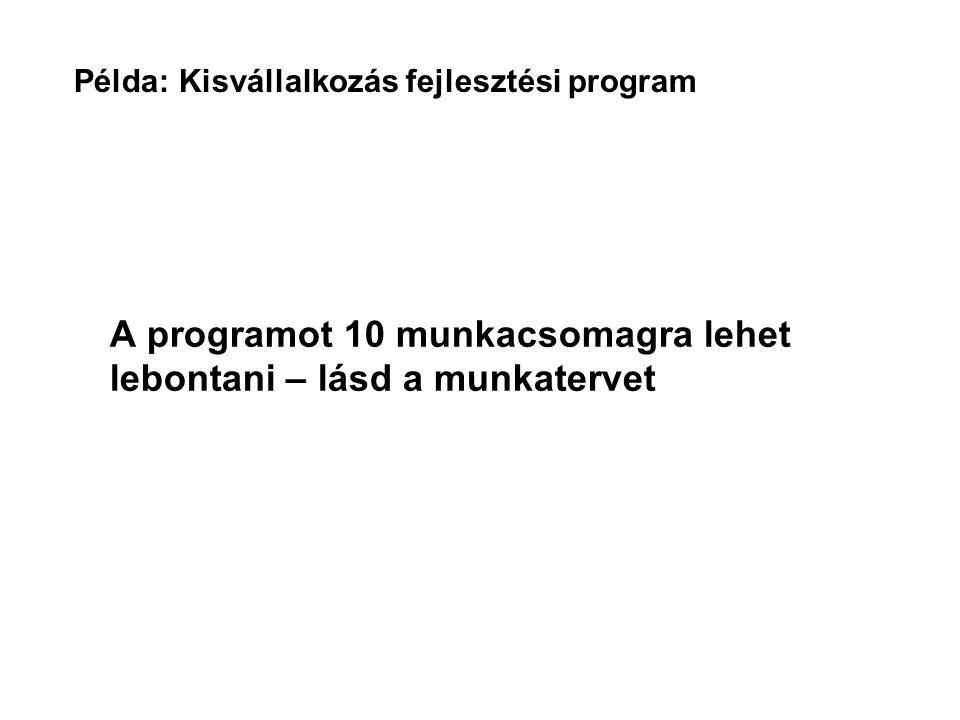 Példa: Kisvállalkozás fejlesztési program Munka- csomag TartalomTanácsadói napok 1Háttérmunka/adatgyűjtés15 2Eszközök/szolgáltatások felmérése20 3Igényfelmérés20 4A legjobb mód megkeresése10 5Javaslatok a szolgáltatások fejlesztésére 30 6Marketing15 7Megvalósítás és továbbadás67 8Menedzsment35 9Értékelés15 Összes227