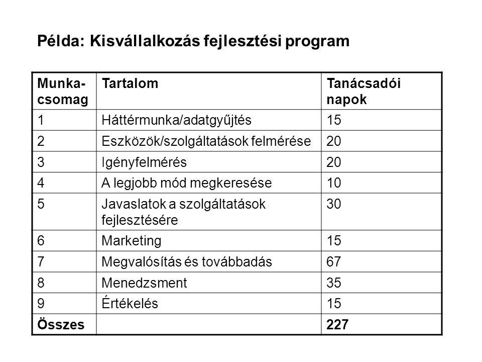 Példa: Kisvállalkozás fejlesztési program Munka- csomag TartalomTanácsadói napok 1Háttérmunka/adatgyűjtés15 2Eszközök/szolgáltatások felmérése20 3Igén