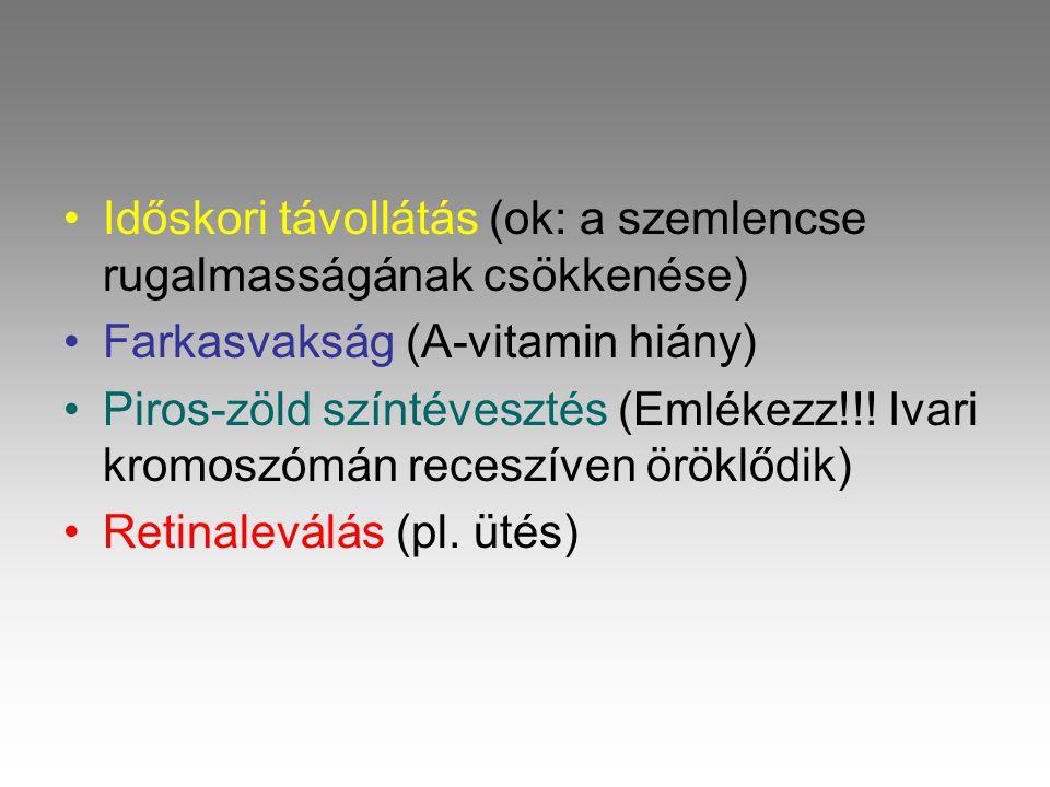 •I•Időskori távollátás (ok: a szemlencse rugalmasságának csökkenése) •F•Farkasvakság (A-vitamin hiány) •P•Piros-zöld színtévesztés (Emlékezz!!.