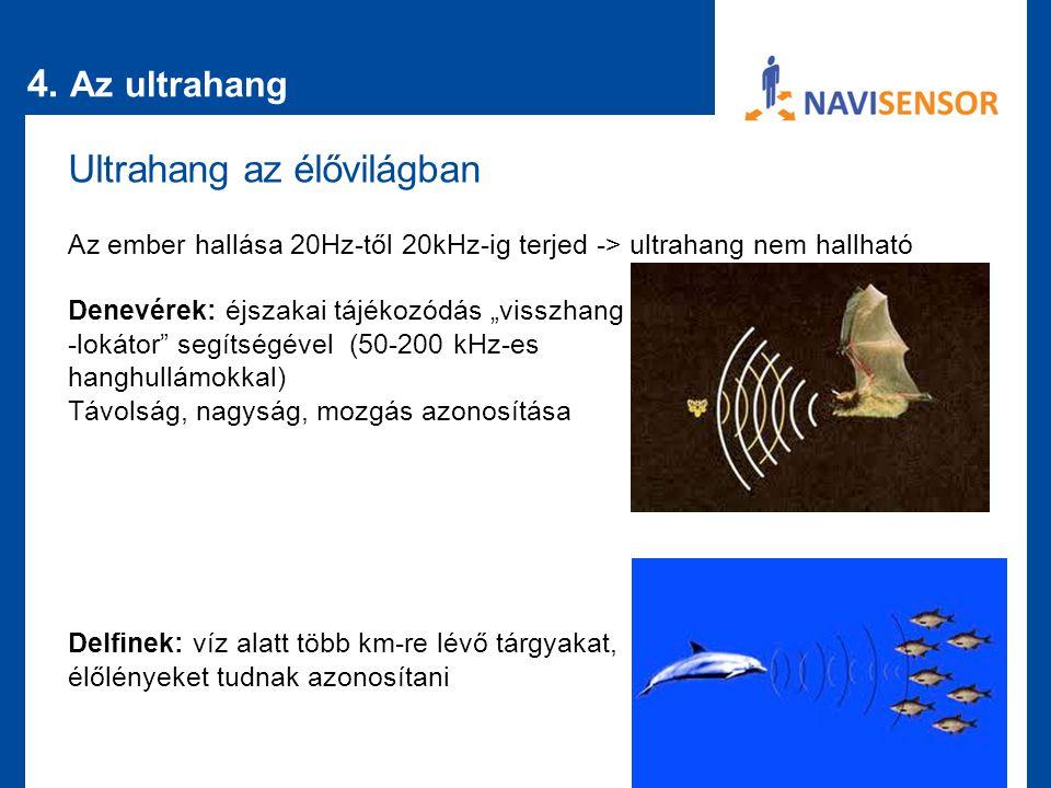 """4. Az ultrahang Ultrahang az élővilágban Az ember hallása 20Hz-től 20kHz-ig terjed -> ultrahang nem hallható Denevérek: éjszakai tájékozódás """"visszhan"""