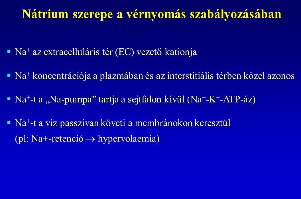 """ Na + az extracelluláris tér (EC) vezető kationja  Na + koncentrációja a plazmában és az interstitiális térben közel azonos  Na + -t a """"Na-pumpa"""" t"""