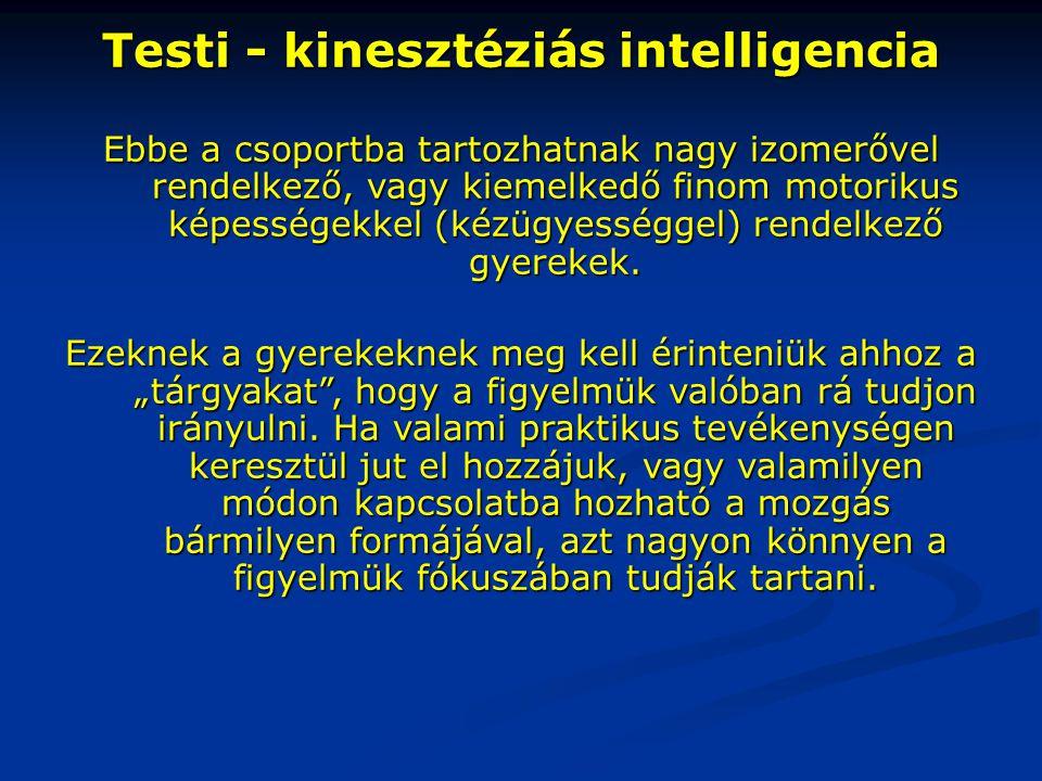 Testi - kinesztéziás intelligencia Ebbe a csoportba tartozhatnak nagy izomerővel rendelkező, vagy kiemelkedő finom motorikus képességekkel (kézügyessé