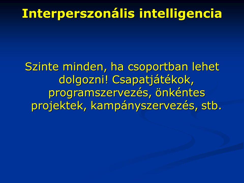 Interperszonális intelligencia Szinte minden, ha csoportban lehet dolgozni! Csapatjátékok, programszervezés, önkéntes projektek, kampányszervezés, stb