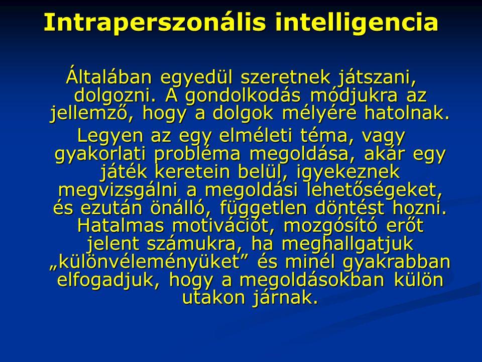 Intraperszonális intelligencia Általában egyedül szeretnek játszani, dolgozni. A gondolkodás módjukra az jellemző, hogy a dolgok mélyére hatolnak. Leg