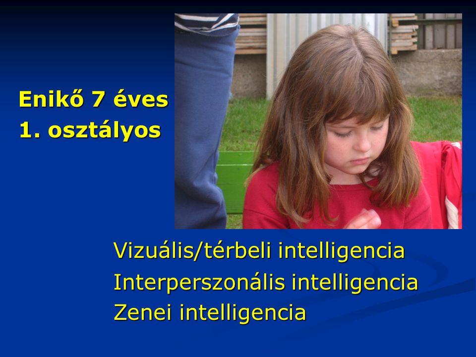 Enikő 7 éves 1. osztályos Vizuális/térbeli intelligencia Interperszonális intelligencia Zenei intelligencia