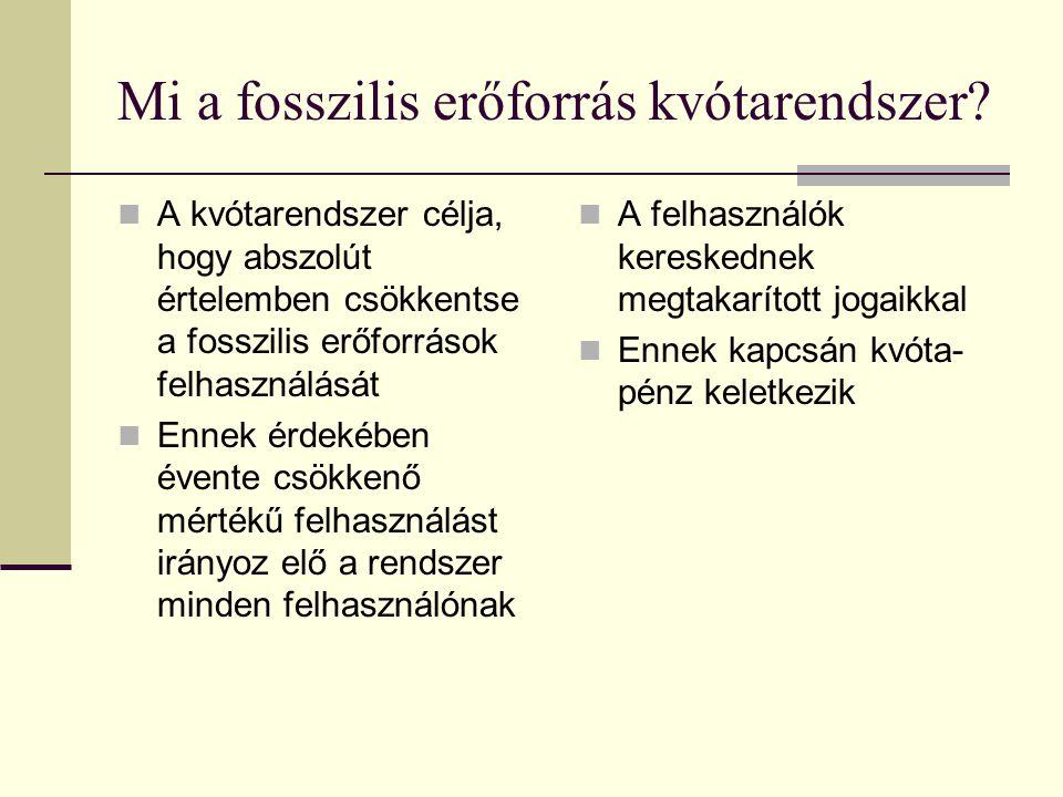 Mi a fosszilis erőforrás kvótarendszer.