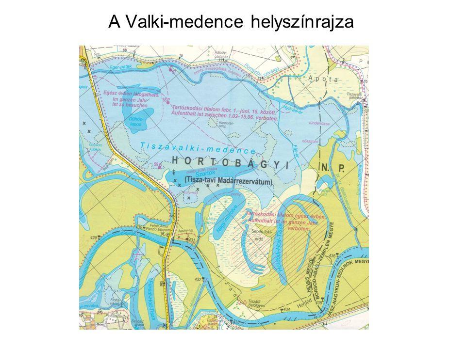 A vizsgált holtágakkal határos tározótér biológiai vízminősége •Halobitás: a holtmedrekkel szomszédos tározótér vize erősen változó sótartal- munak tekinthető, alacsony fajlagos vezetés értékek mellett.