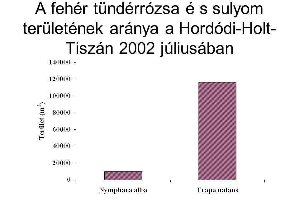 A fehér tündérrózsa é s sulyom területének aránya a Hordódi-Holt- Tiszán 2002 júliusában