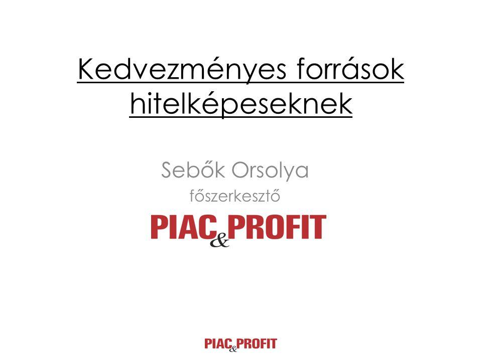 Kedvezményes források hitelképeseknek Sebők Orsolya főszerkesztő
