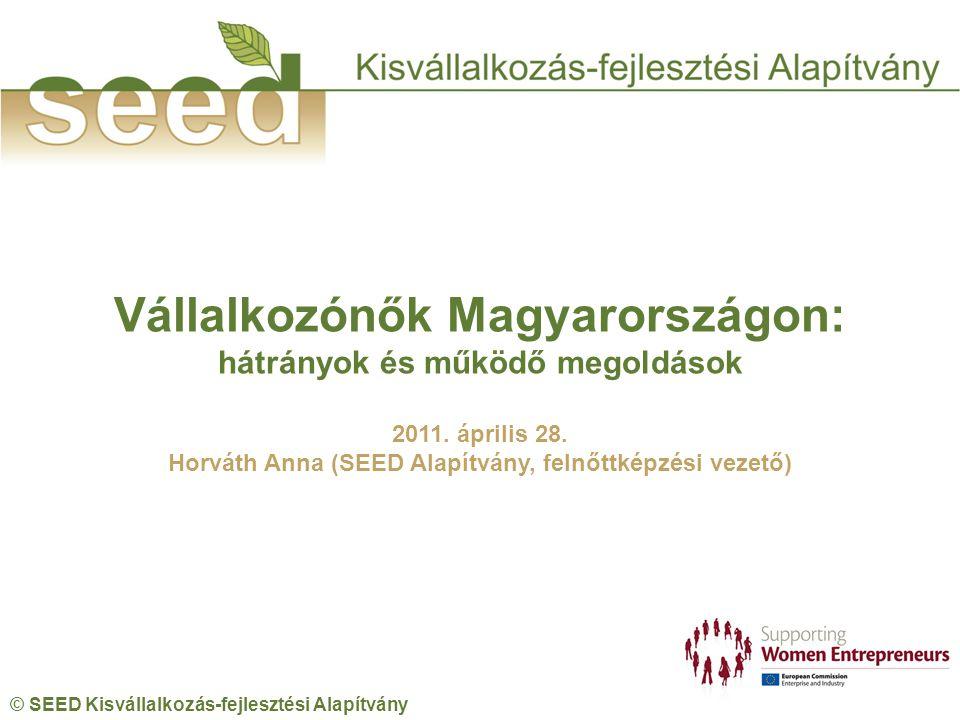 © SEED Kisvállalkozás-fejlesztési Alapítvány Vállalkozónők Magyarországon: hátrányok és működő megoldások 2011.