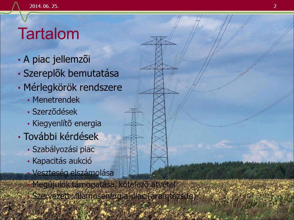A piac jellemzői • Az infrastruktúra (villamosenergia-rendszer) és a kereskedés elválik egymástól • Hálózati tevékenység • Monopol helyzet • Költségeit meg kell téríteni (különbözõ forrásokból) • Kiszolgálja a kereskedelmi tranzakciókat • Kereskedés a hálózattól függetlenül • Hálózati hozzáféréssel rendelkezik • A hálózati korlátokat nem veszi figyelembe • A kereskedelmi termék (villamos energia) nem tárolható • Kiegyenlítõ energia és szabályozási piac 2014.