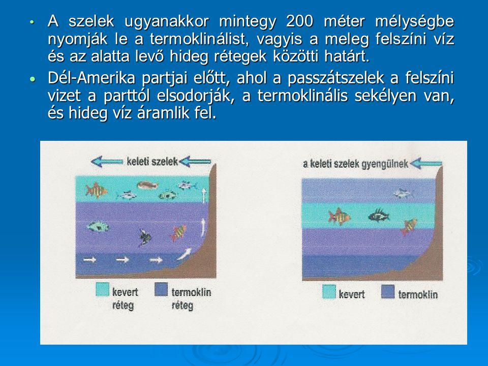 • A szelek ugyanakkor mintegy 200 méter mélységbe nyomják le a termoklinálist, vagyis a meleg felszíni víz és az alatta levő hideg rétegek közötti határt.