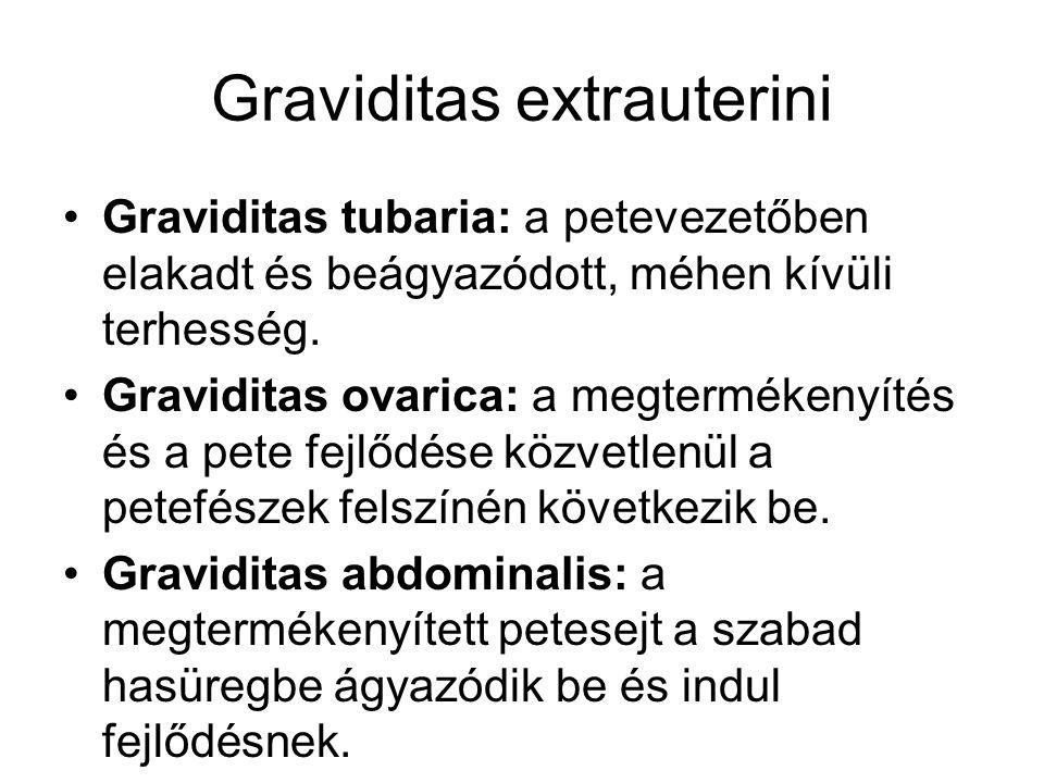 Graviditas extrauterini •Graviditas tubaria: a petevezetőben elakadt és beágyazódott, méhen kívüli terhesség. •Graviditas ovarica: a megtermékenyítés