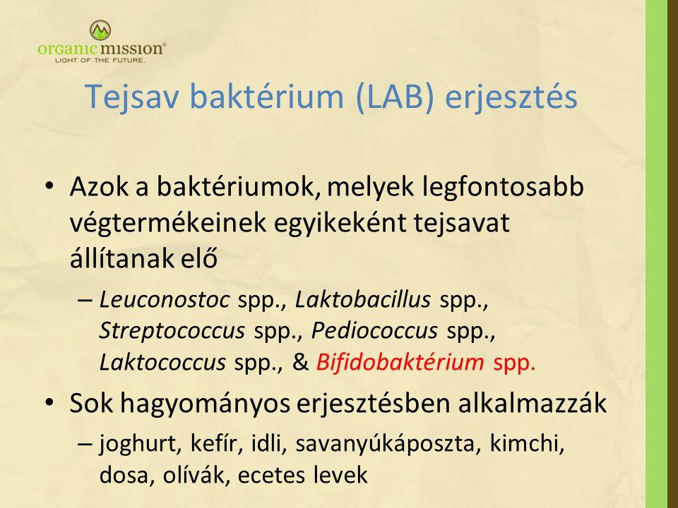 Tejsav baktérium (LAB) erjesztés • Azok a baktériumok, melyek legfontosabb végtermékeinek egyikeként tejsavat állítanak elő – Leuconostoc spp., Laktobacillus spp., Streptococcus spp., Pediococcus spp., Laktococcus spp., & Bifidobaktérium spp.