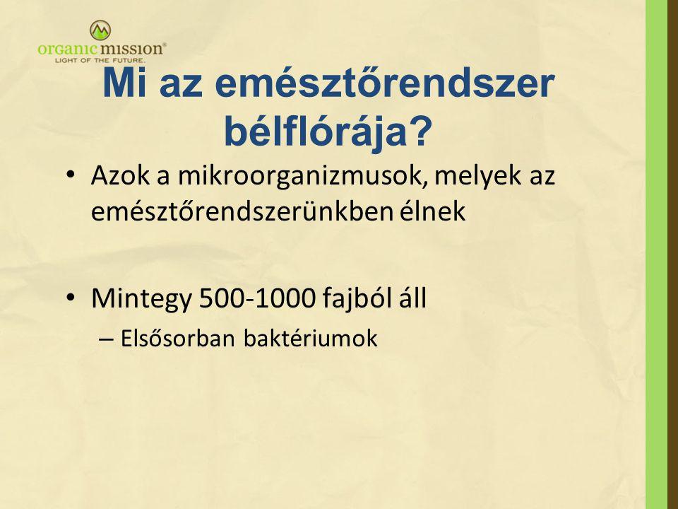 Az emberi emésztőrendszer bélflórája •Az emberi emésztőrendszer bélflórája 10 14 db életképes mikroorganizmust tartalmaz –Ez a szám az ember összes sejtszámának 10-szerese.