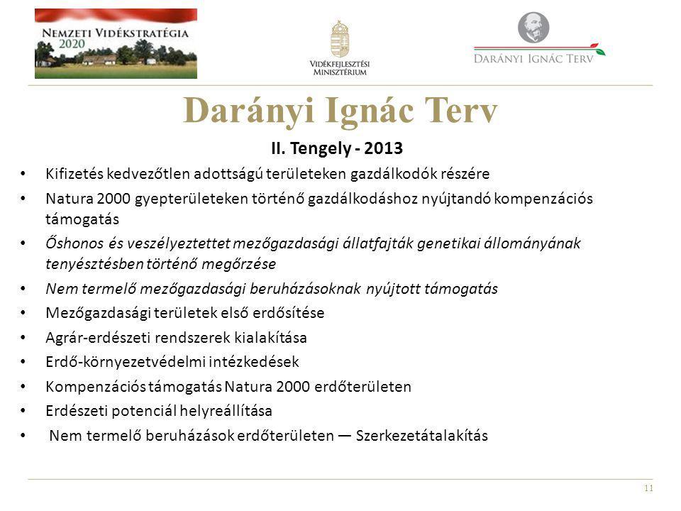 11 Darányi Ignác Terv II.