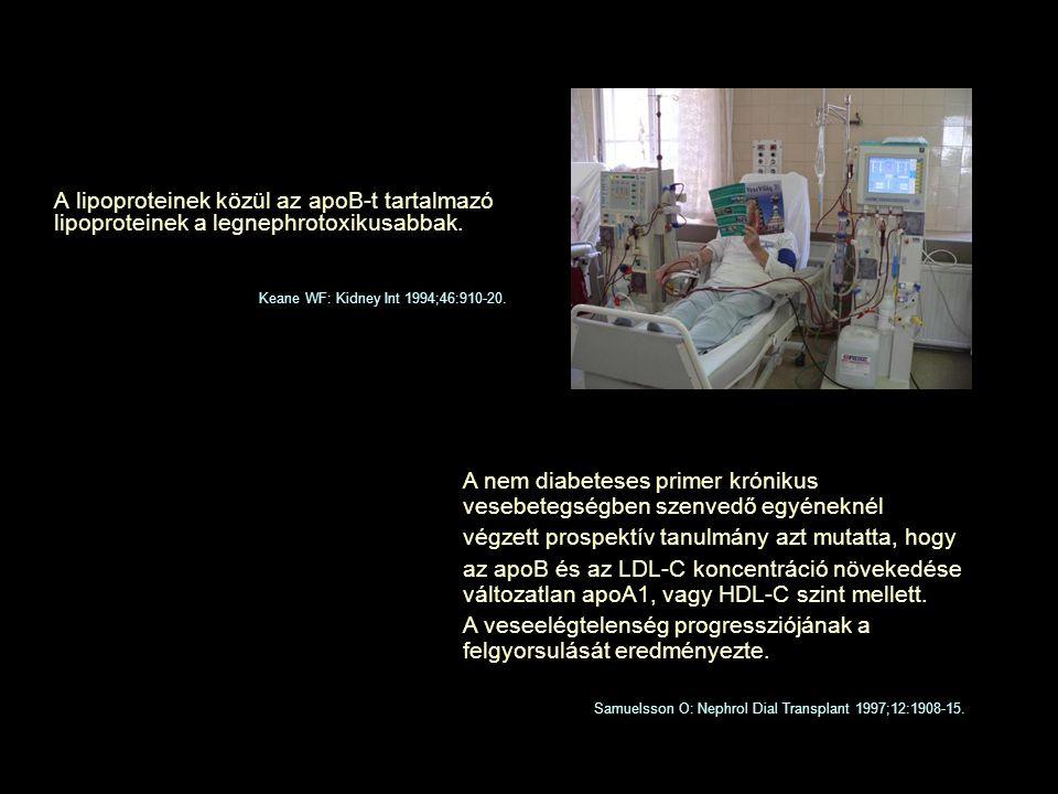 A lipoproteinek közül az apoB-t tartalmazó lipoproteinek a legnephrotoxikusabbak. Samuelsson O: Nephrol Dial Transplant 1997;12:1908-15. A nem diabete