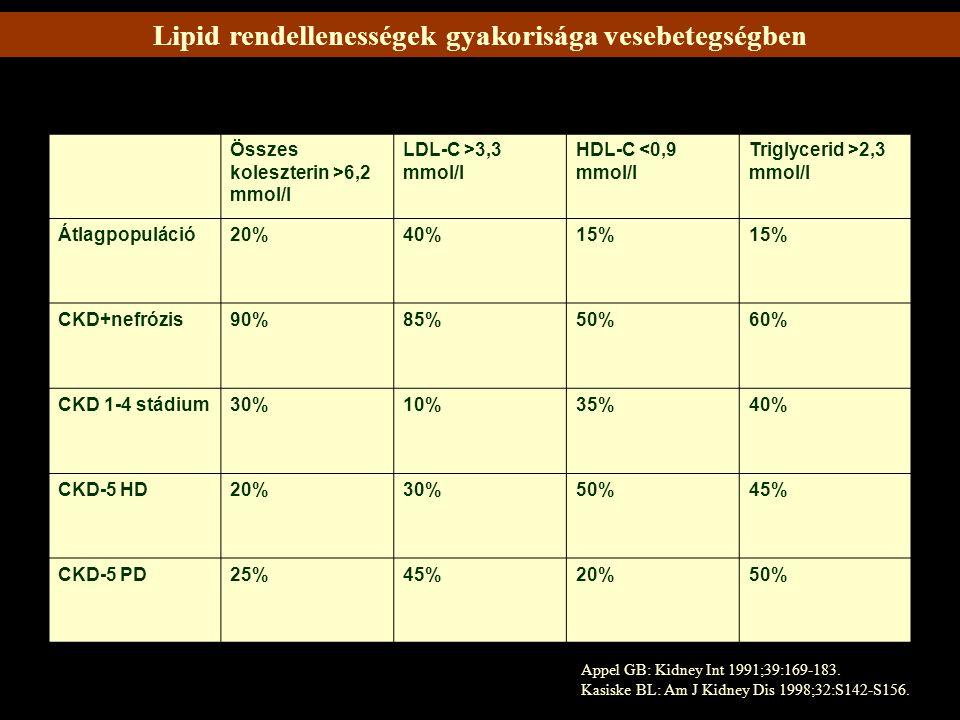 Vesebetegek körében végzett prospektív tanulmányok VizsgálatBetegekVesefunkció Fried és mtsai metaanalízis (1991-1996 között tanulmányok) Diabeteses nephropathia és glomerulonephritis GFR csökkenés szignifikánsan mérséklődött statin kezelt csoportban Bianchi és mtsai56 beteg, kiindulási GFR 50 ml/perc, napi 2.2 g fehérjeürítés, ACE gátló, vagy ARB kezelés + statin vagy placebo GFR csökkenés mértéke szignifikánsan alacsonyabb volt a statint szedő csoportban, proteinuria 57%-kal csökkent Dijk és mtsai10 normocholesterinaemias beteg, simvastatin, vagy placebo statint szedő csoportban GFR szignifikánsan nőtt Tonolo és mtsai26, 2-es típusú DM microalbuminuriaval, 10 hónapos kezelés, simvastatin, statin abbahagyása cholesterinamin kezelés, azonos mértékű lipidcsökkentés statin mellett csökkent a proteinuria, GFR szignifikánsan nem változott Lee és mtsai Kano és mtsai 63 proteinurias, normolipidaemias beteg, pravastatin kezelés, 6 hónap 30 IgA nephropathias gyerek, és 36 minimal change glomerulonephritis proteinuria csökkent proteinuria, hematuria csökkent, vesefunkció javult Fried és mtsai13, kis kontrollált tanulmányban, mely 384 krónikus vesebeteget foglalt magába, több, mint a felének volt diabetese a statin kezelés renoprotektív és jelentős mértékben csökkenti a proteinürítést és gátolja a GFR csökkenést.