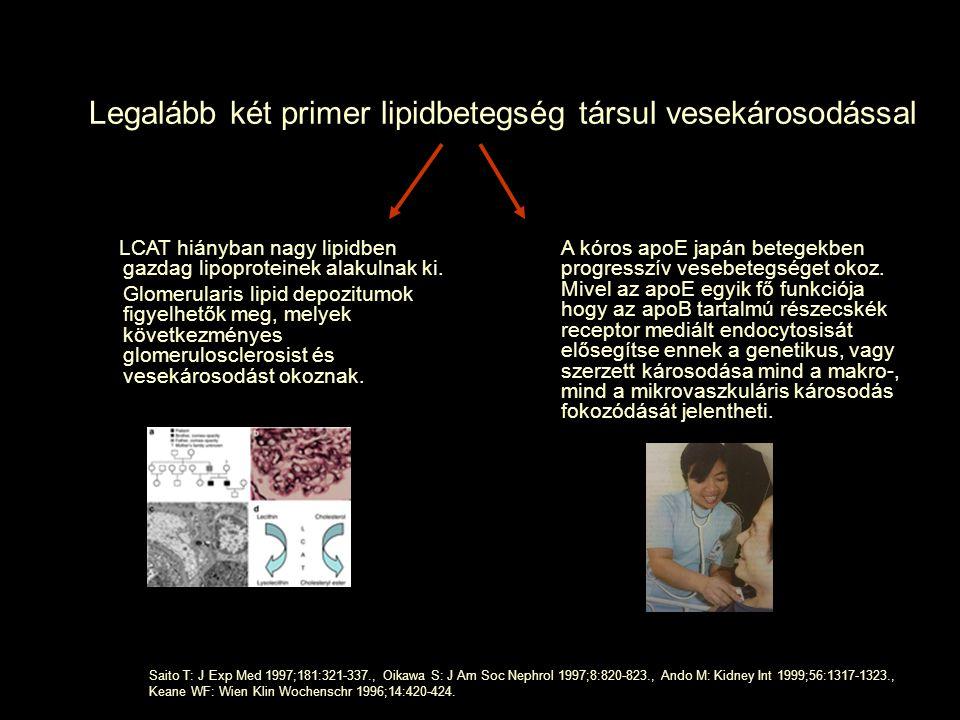 Legalább két primer lipidbetegség társul vesekárosodással LCAT hiányban nagy lipidben gazdag lipoproteinek alakulnak ki. Glomerularis lipid depozitumo
