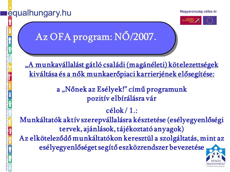 """Az OFA program: NŐ/2007. """"A munkavállalást gátló családi (magánéleti) kötelezettségek kiváltása és a nők munkaerőpiaci karrierjének elősegítése: a """"Nő"""