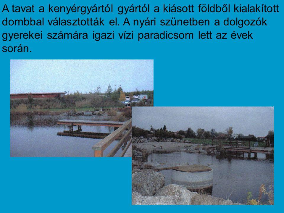 A tavat a kenyérgyártól gyártól a kiásott földből kialakított dombbal választották el.
