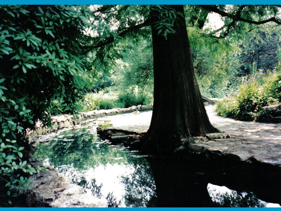 Ha tűzivíz tározó medencére gondolunk, általában beton medencék jelennek meg az ember szeme előtt.