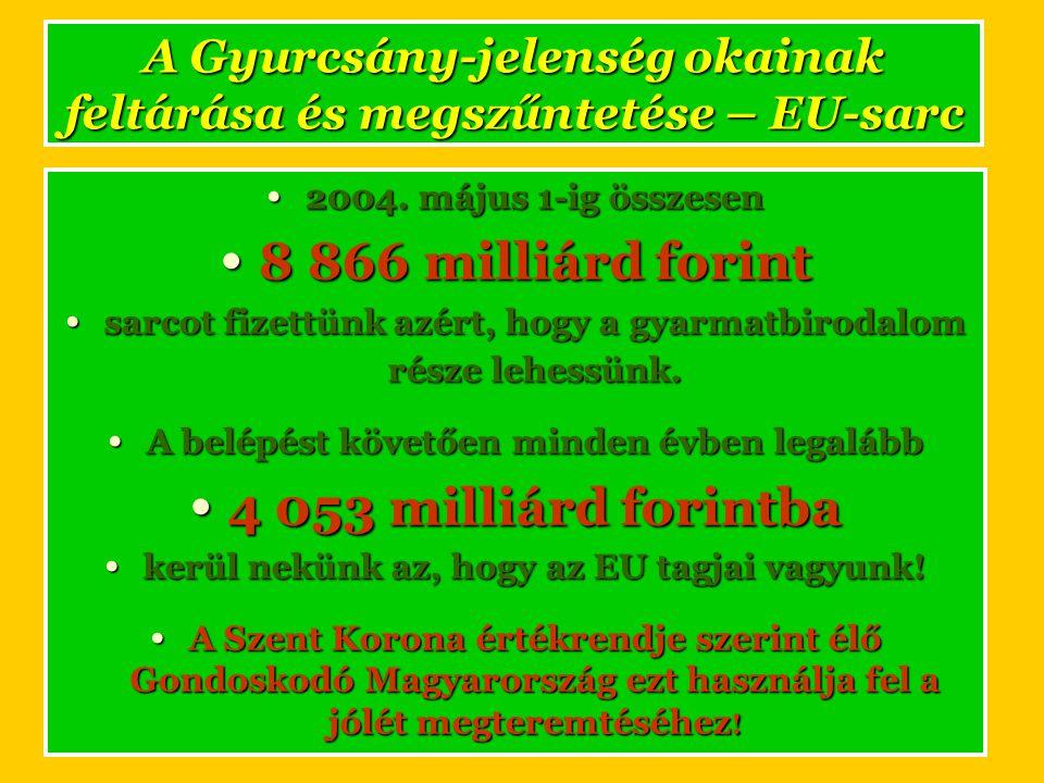 A Gyurcsány-jelenség okainak feltárása és megszűntetése – EU-sarc • 2004.