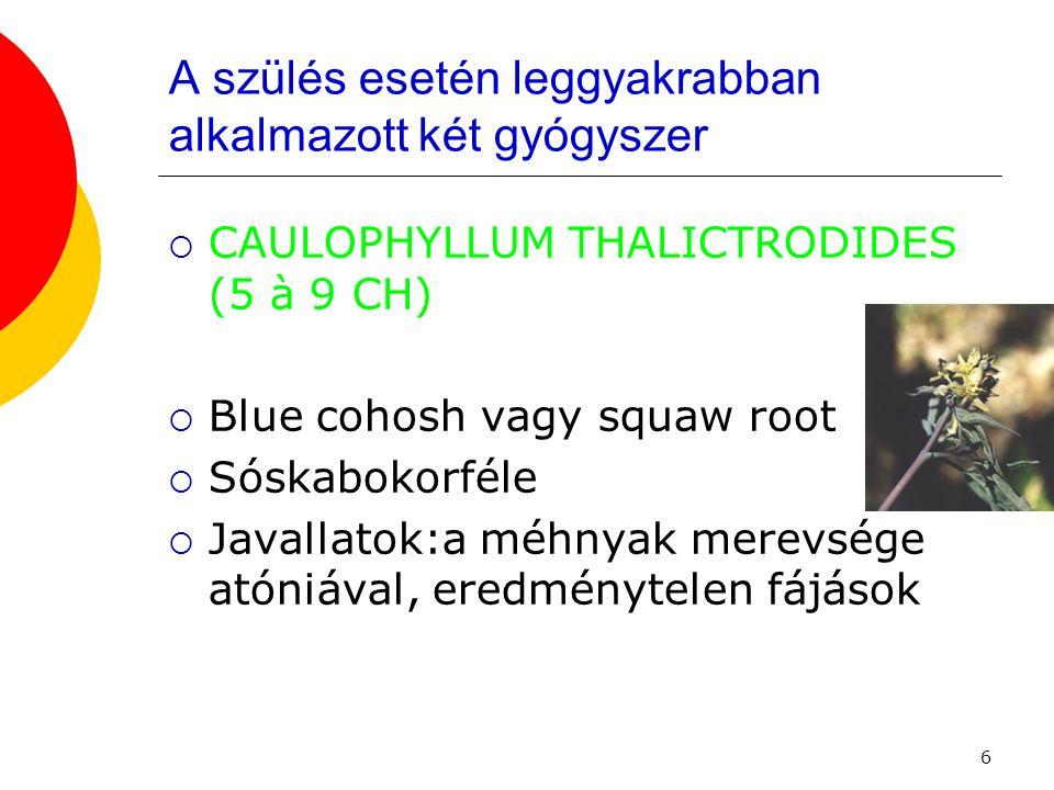 6 A szülés esetén leggyakrabban alkalmazott két gyógyszer  CAULOPHYLLUM THALICTRODIDES (5 à 9 CH)  Blue cohosh vagy squaw root  Sóskabokorféle  Ja