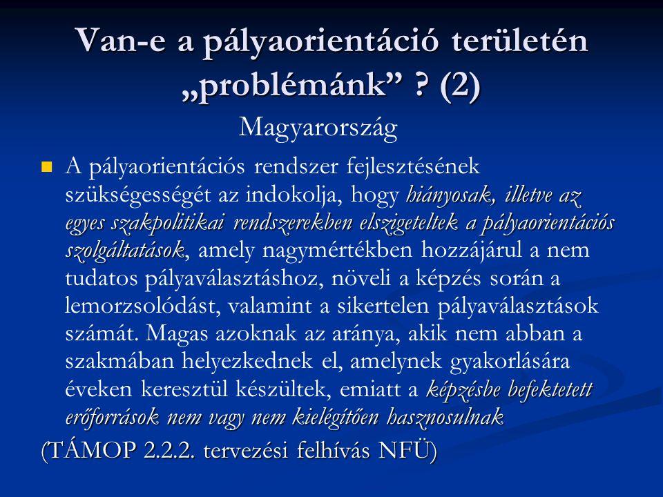 """Van-e a pályaorientáció területén """"problémánk"""" ? (2)  hiányosak, illetve az egyes szakpolitikai rendszerekben elszigeteltek a pályaorientációs szolgá"""