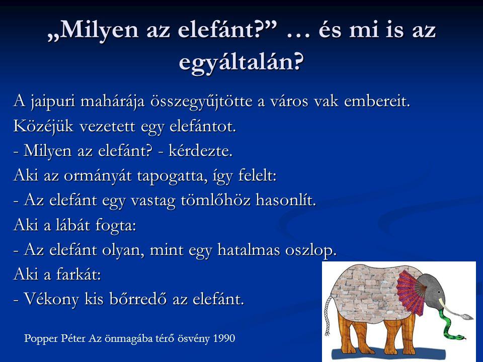 """""""Milyen az elefánt?"""" … és mi is az egyáltalán? A jaipuri mahárája összegyűjtötte a város vak embereit. Közéjük vezetett egy elefántot. - Milyen az ele"""