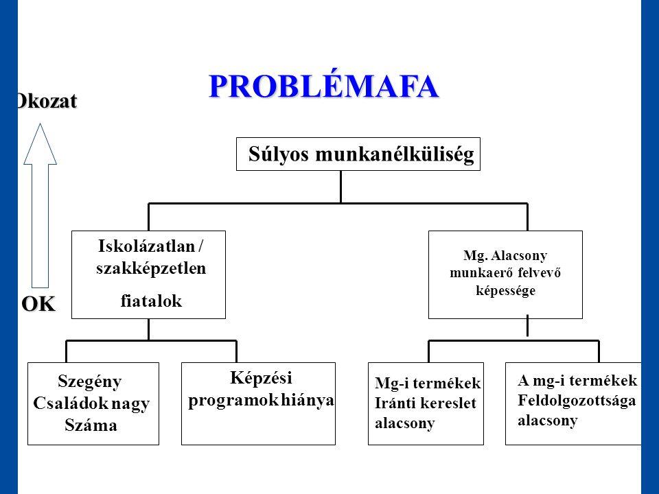 PROBLÉMAFA Súlyos munkanélküliség Iskolázatlan / szakképzetlen fiatalok Mg. Alacsony munkaerő felvevő képessége Szegény Családok nagy Száma Képzési pr