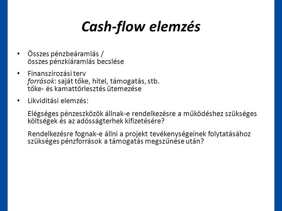 Cash-flow elemzés • Összes pénzbeáramlás / összes pénzkiáramlás becslése • Finanszírozási terv források: saját tőke, hitel, támogatás, stb. tőke- és k